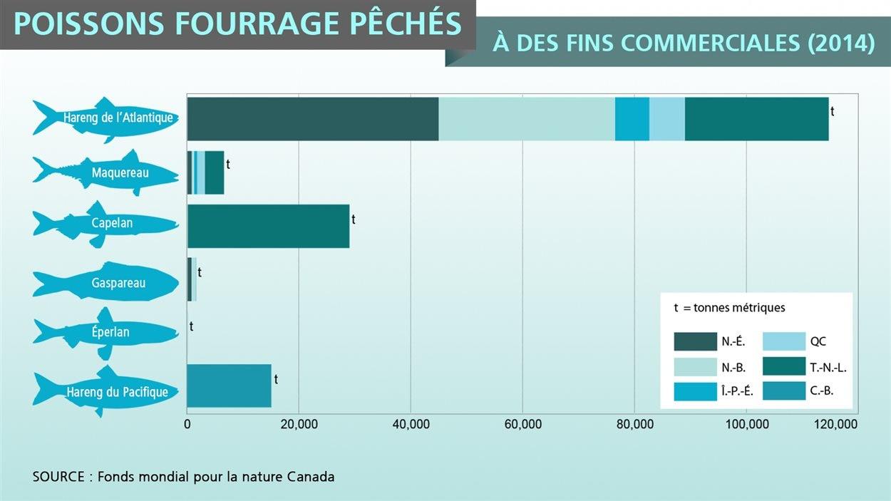 Quantité de poissons fourrage pêchés à des fins commerciales en 2014, en nombre de tonnes