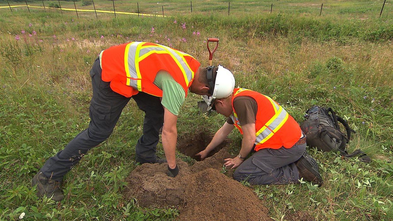 Des fouilles archéologiques ont lieu à Moisie.