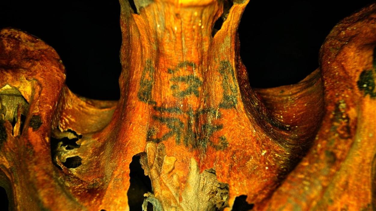 Le cou du corps de la momie