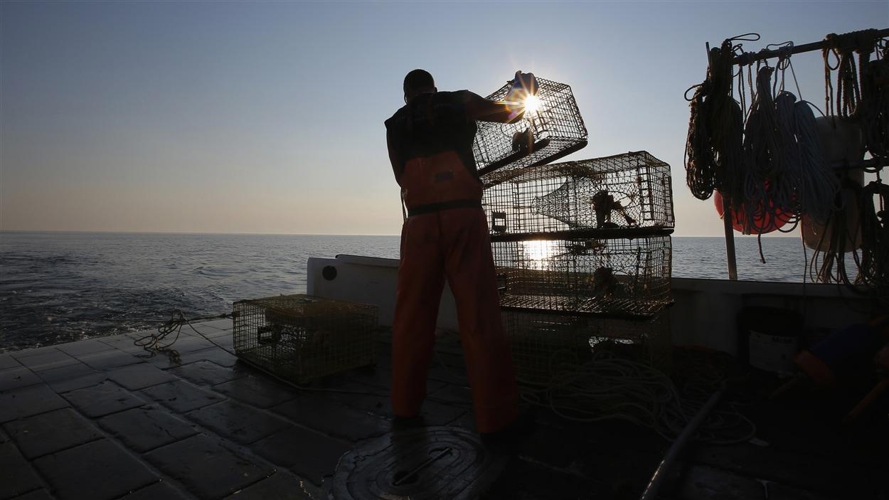 Un pêcheur de homards