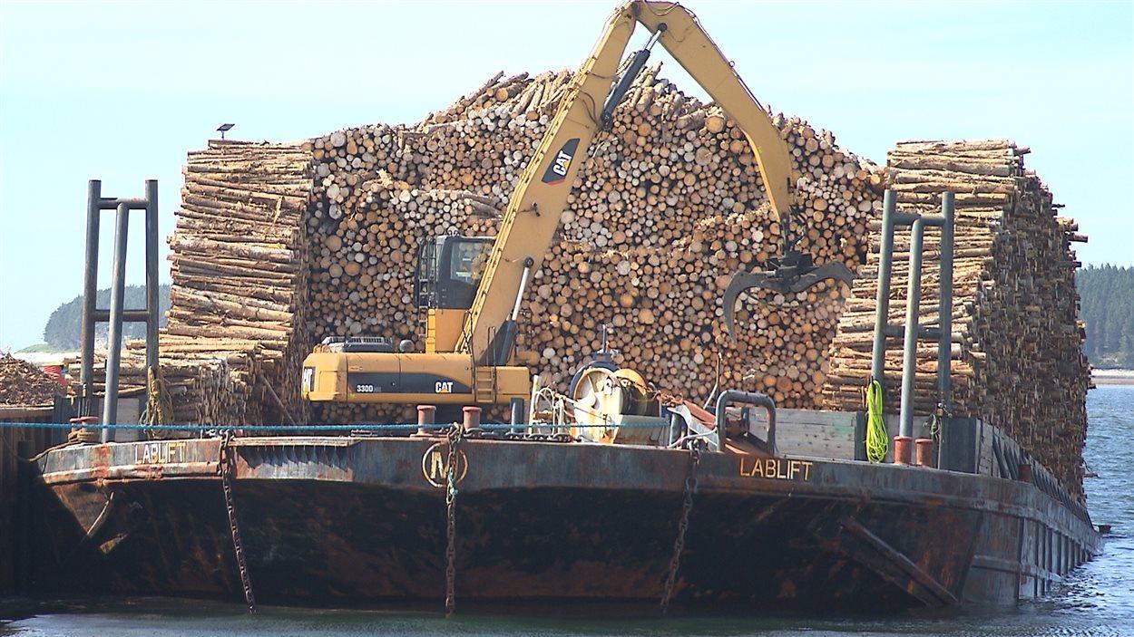 Manutention de bois récolté sur Anticosti.