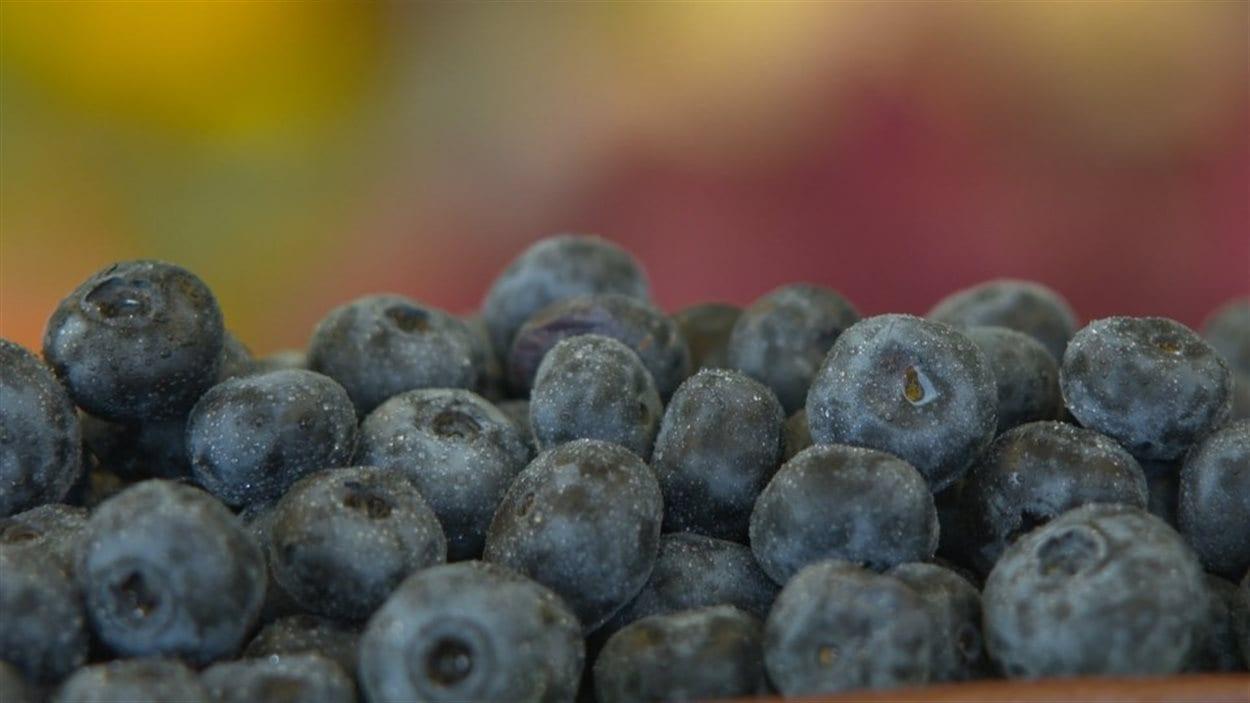 Les bleuets ont diverses propriétés nutritives et pharmaceutiques.