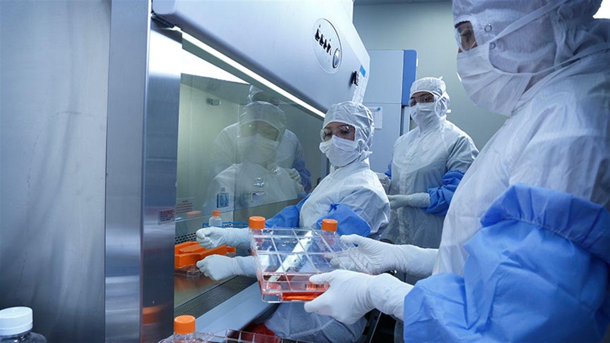 Des employés de laboratoire