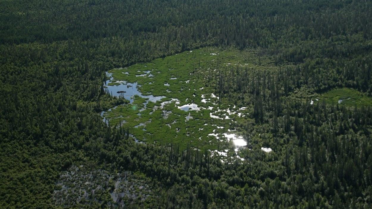 Autre vue du ciel du parc national Wood Buffalo