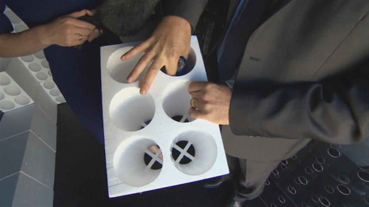 Les homards sont placés dans des compartiments en styromousse.