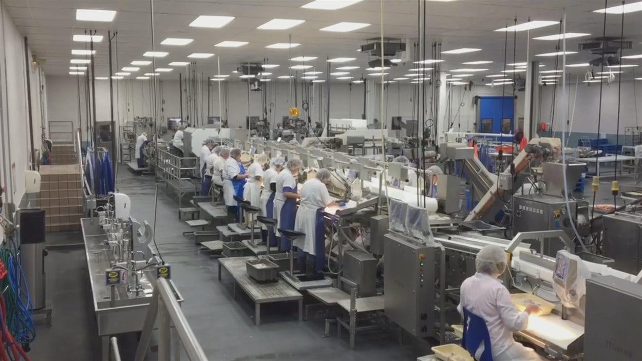 L'usine de transformation d'Arnold's Cove produit 50 millions de livres de morue par année.