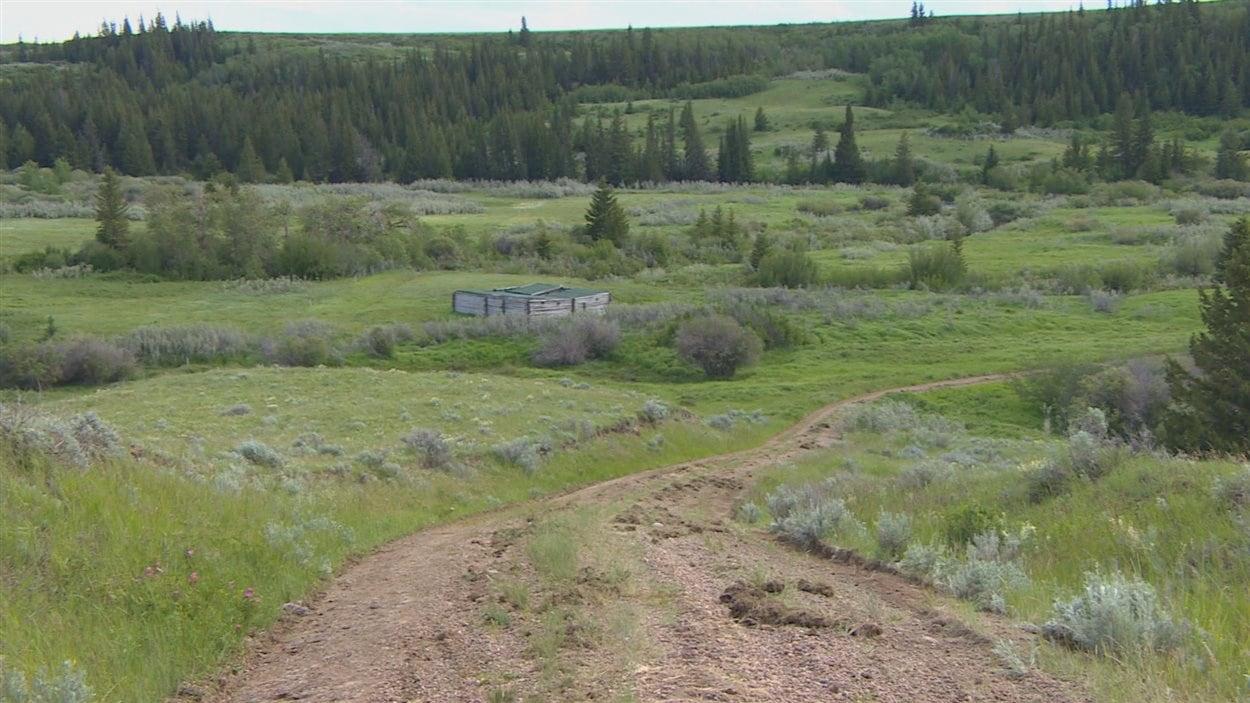 Une vallée traversée par le sentier des anciens forts qui relie Fort Walsh (Saskatchewan) à Fort Benton (Montana)