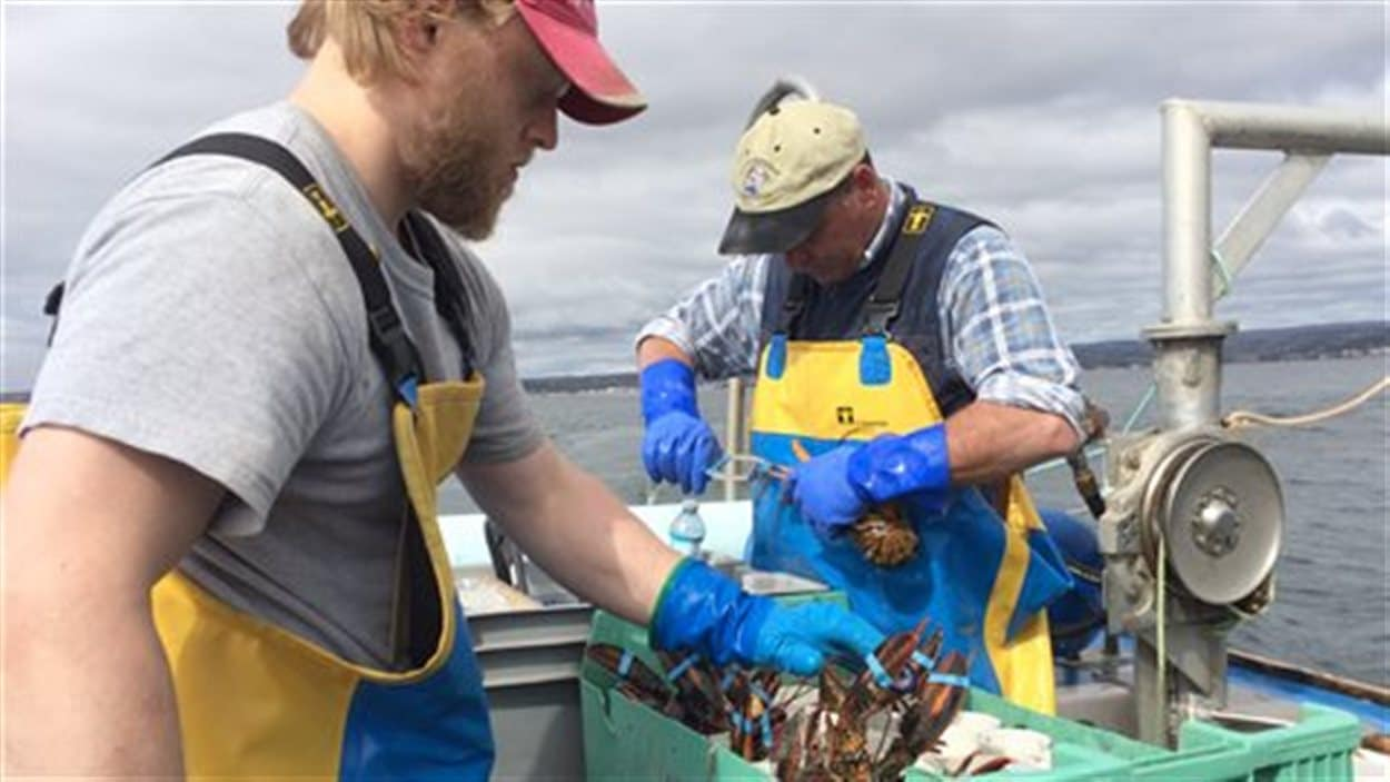 Pêcheurs de homard