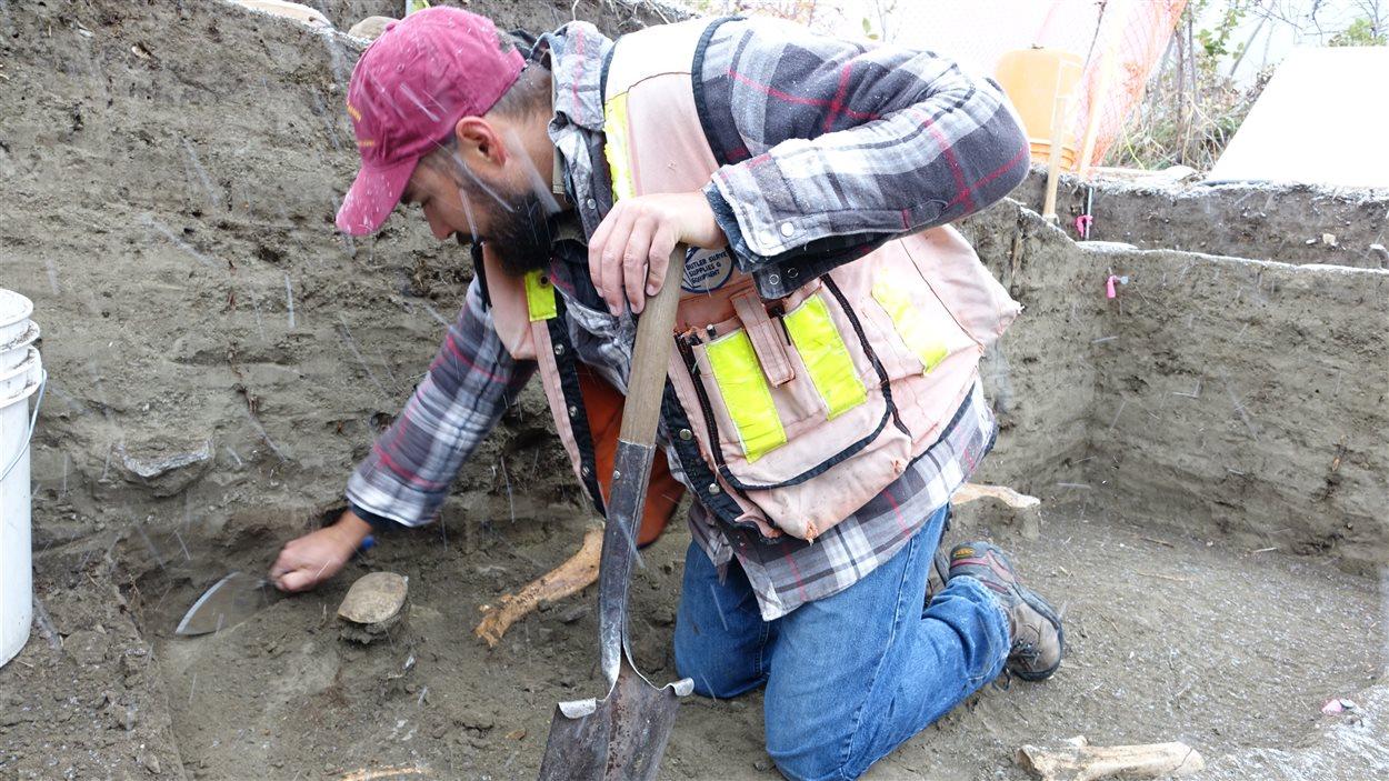 L'archéologue Derrick Foster racle la terre à la découverte d'os de bisons au site de fouilles McKinnon Flats.