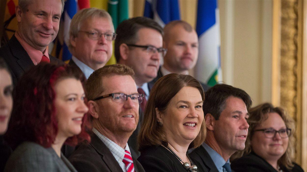 La ministre fédérale de la Santé, Jane Philpott (en bas au centre) en compagnie de ses homologues provinciaux et territoriaux en janvier 2016.