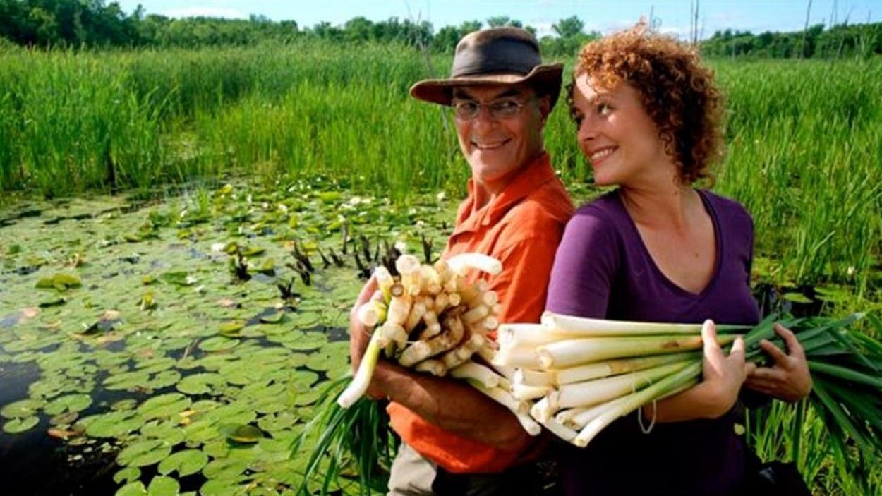 Gérald Le Gal et Ariane Paré-Le Gal cueillent des quenouilles à Pointe-Fortune au Québec.