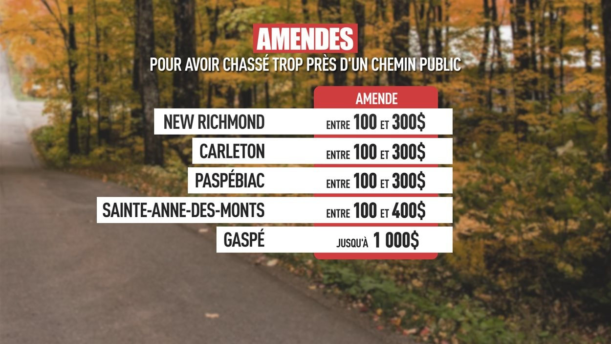 Tableau des amendes pour avoir chassé trop près d'un chemin public. À New Richmond, Carleton et Paspébiac, c'est entre 100 et 300$. À Sainte-Anne-des-Monts, les amendes atteignent 400$ et à Gaspé jusqu'à 1000$.