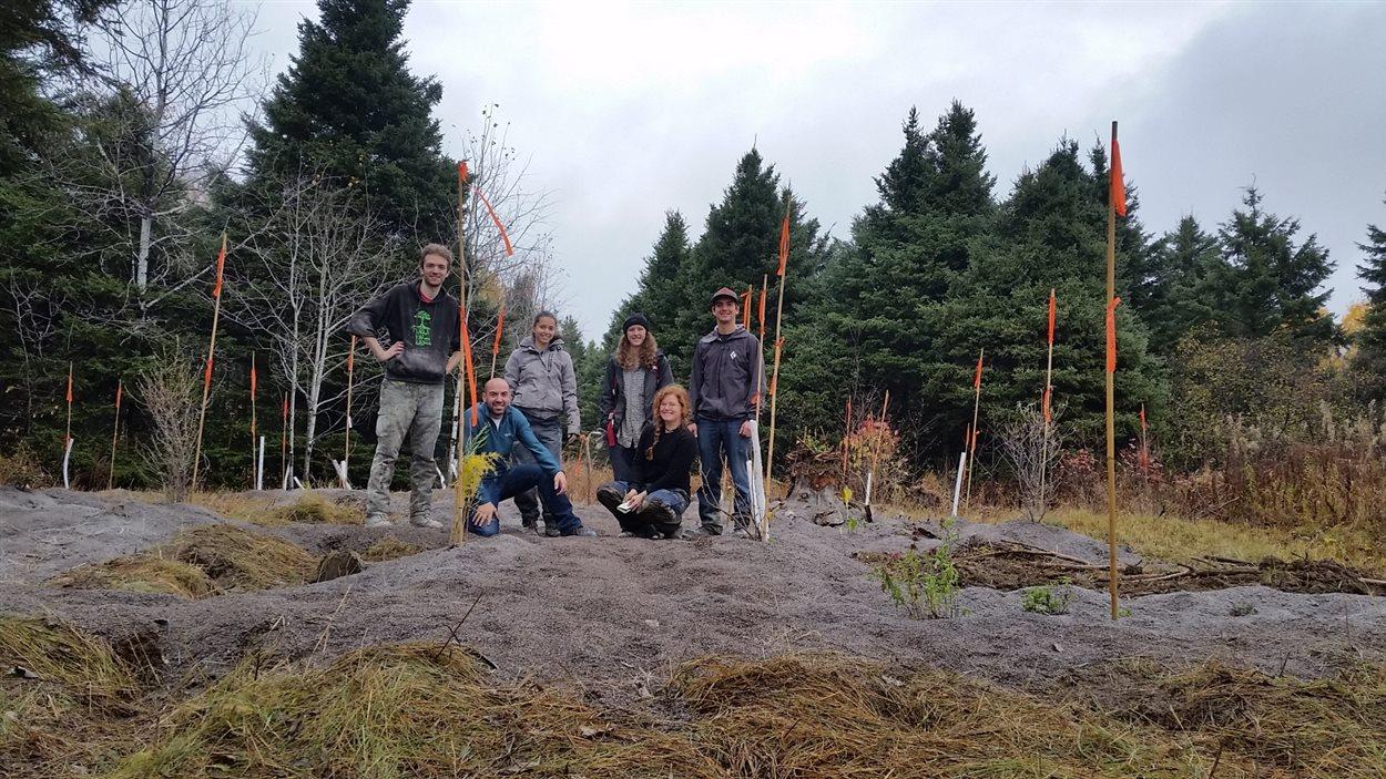 Des étudiants en Techniques du milieu naturel du Cégep de Saint-Félicien dans la forêt comestible.