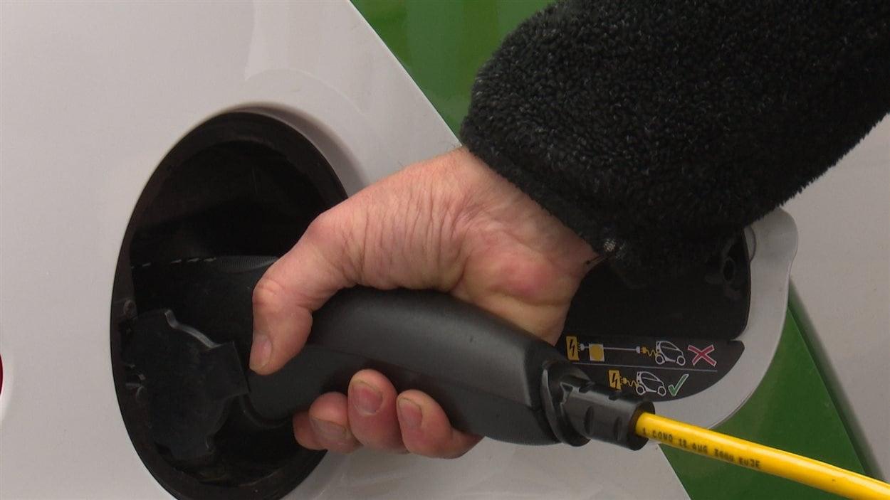 Les frais réduits et la subvention d'achat de 8000 $ attirent les acheteurs de véhicule électrique.