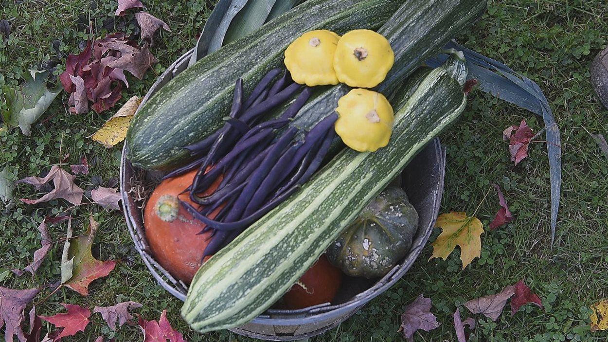 Cette famille produit assez de fruits et légumes pour une année entière.