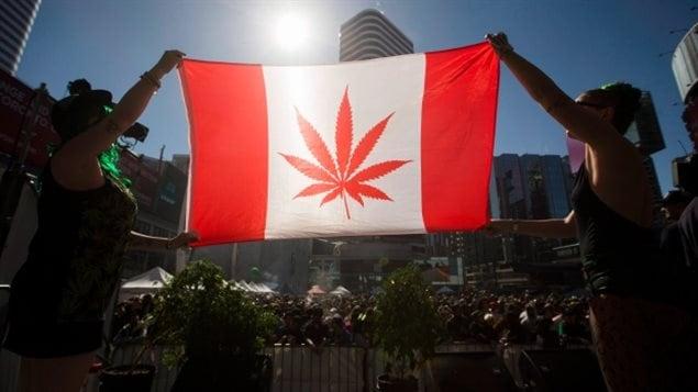 恶搞:加拿大国旗上的枫叶变成了大麻叶