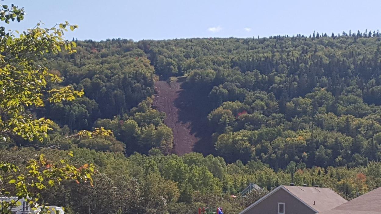 Plan éloigné de la piste déboisée où sera installé la nouvelle remontée sur la montagne.