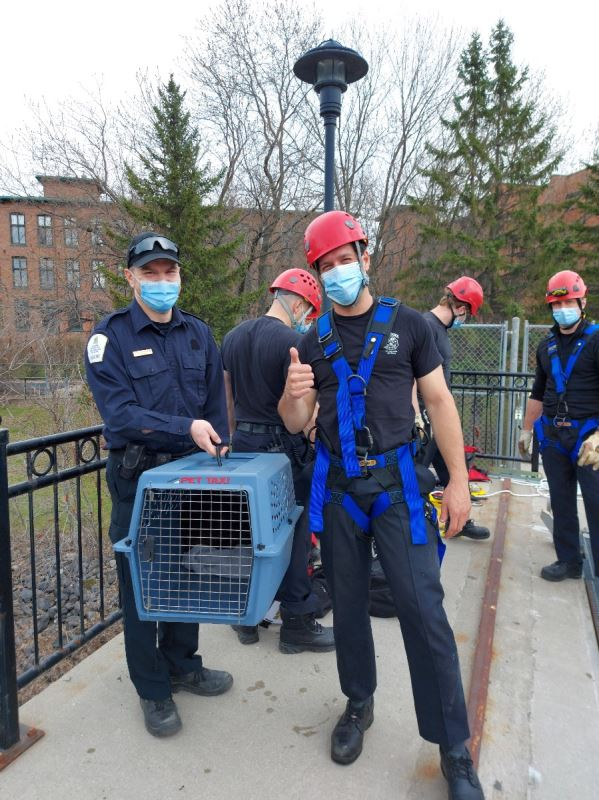 Les pompiers font la pose avec une cage de chat.