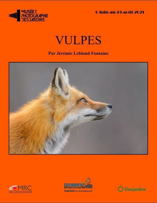 Une affiche montrant un renard et le nom « Vulpes », par Jérémie Leblond Fontaine.
